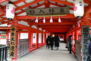 厳島神社 正面