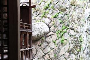 幸神社 陰陽石
